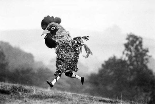 weird-vintage-chicken-costume