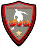 logo_bvb